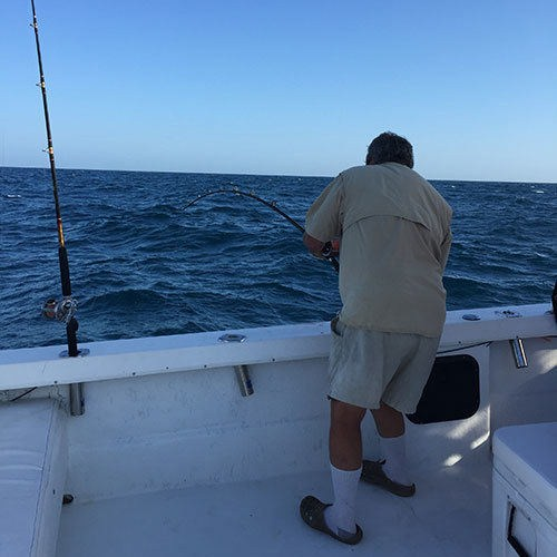 Amberjack Fight on Ft Myers Deep Sea Charter