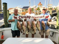 Grouper fishing charter in Fort Myers
