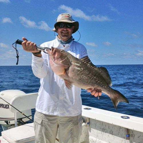 Giant Grouper Caught on Cape Coral Deep Sea Charter
