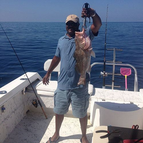 Massive Red Grouper Caught on Cape Coral Deep Sea Fishing Charter