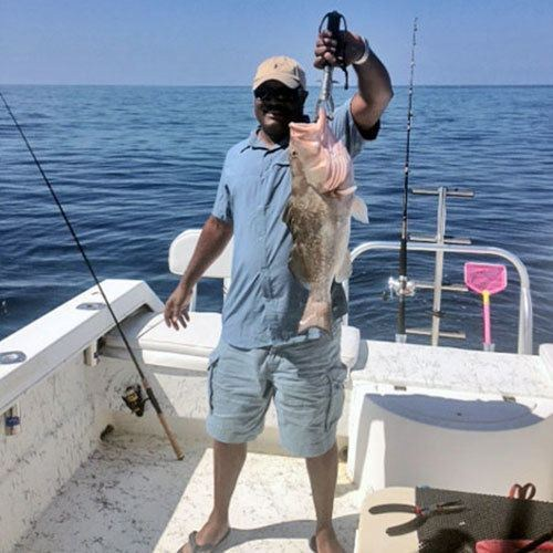 Giant Grouper Hooked on Ft Myers Deep Sea Charter