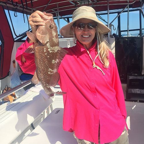 Red Grouper Caught on Ft Myers Deep Sea Fishing Charter