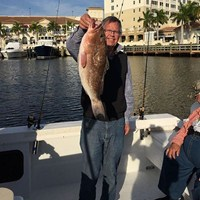 Fat Red Grouper Caught on Ft Myers Deep Sea Charter