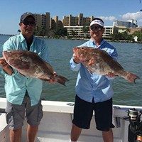 Two Massive Grouper Caught on Cape Coral Deep Sea Charter