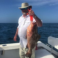 Keeper Red Grouper Caught on Florida Deep Sea Charter