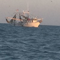 Fishing Trawler Spotted During Deep Sea Fishing Charter