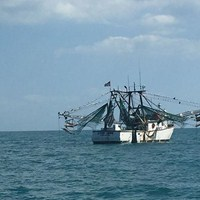 Fishing Trawler Spotted During Fishing Charter