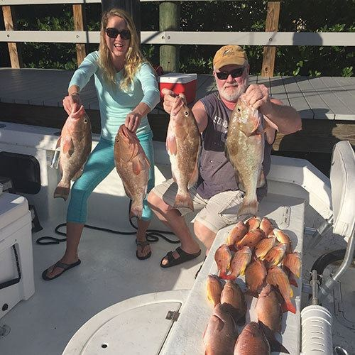 Four Keeper Grouper Caught in Ft Myers