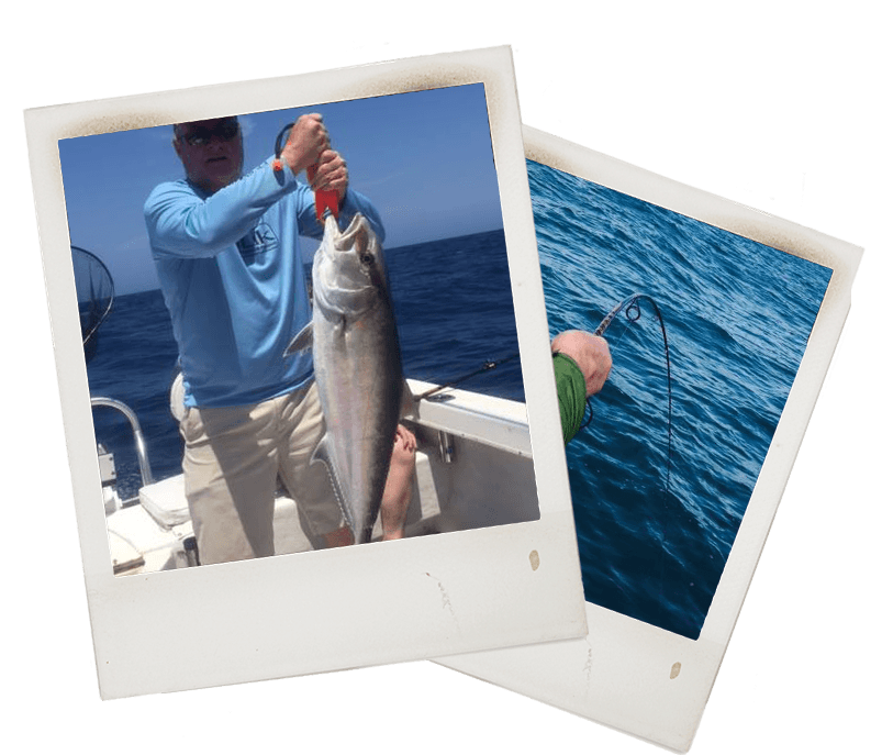 Amberjack Fishing Near Ft Myers