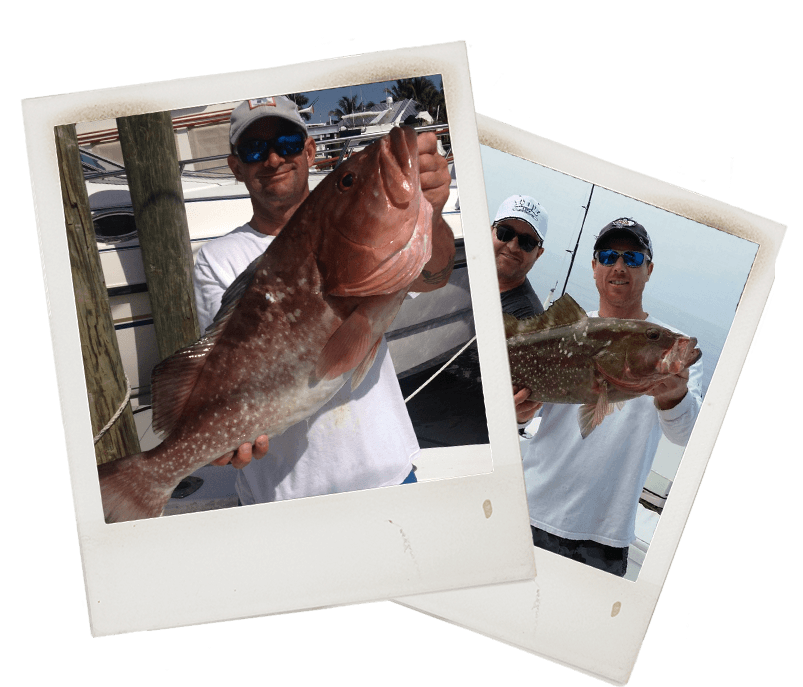 Grouper Fishing Charter in Ft Myers Florida