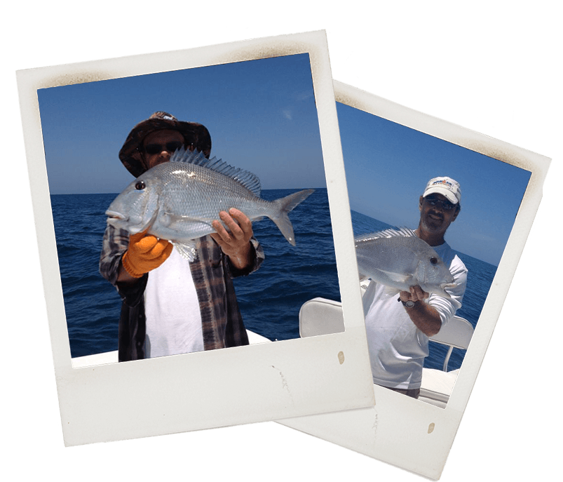 Ft Myers Porgy Fishing Charter